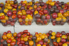 Organic Fruit and vegetables: tomato Stock Photography