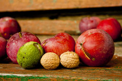Organic fruits, apples and nuts Royalty Free Stock Photos
