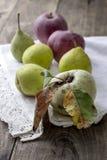Organic fruits Royalty Free Stock Photo
