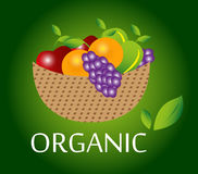 Organic fruits background Stock Image