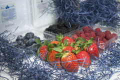 Organic fruits. From farm to market - strawberry, blueberry, blackberry, raspberry, healthy Stock Images