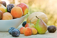 Organic fruits Royalty Free Stock Images