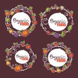 Organic fruits Royalty Free Stock Photography