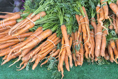 Organic Fruits and Vegetables in Farmers Market : Wilson Park, T. Wison Park Farmers Market, Torrance, California. Bunch of fresh carrots with stems attached Royalty Free Stock Photography