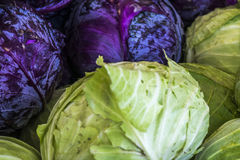 Organic Fruits and Vegetables in Farmers Market : Wilson Park, T Stock Photography