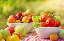 Organic fruits and vegetables Royalty Free Stock Photos