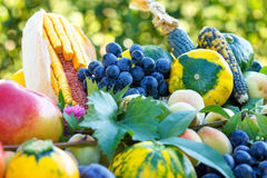 Organic fruits and vegetables Royalty Free Stock Images