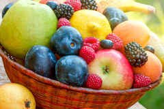 Organic fruits in wicker basket. Fresh organic fruits in wicker basket on table Royalty Free Stock Images