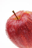 Organic Gala apple covered with drops of water Stock Photography