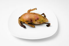 Organic game duck meat uncooked ready for cooking single one white background pocelain plate Royalty Free Stock Photos