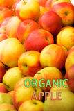 Organic garden apples with lable Organic garden apple stock images
