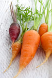 Organic garden carrots Royalty Free Stock Images