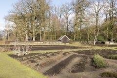 Organic garden. Royalty Free Stock Photo