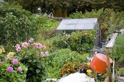 Organic Garden Royalty Free Stock Image