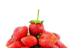 Organic garden strawberry Stock Photography
