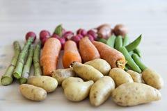 Organic garden vegetables Stock Photo