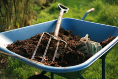 Organic Gardener Stock Image