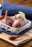 Organic garlic in a basket Stock Photos