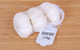 Organic garlic bulbs in net Stock Photography