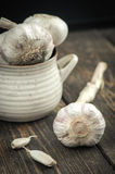 Organic garlic Royalty Free Stock Images