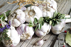 Organic garlic in the kitchen on the wooden table Royalty Free Stock Photo