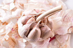 Organic garlic. Natural antibiotic. Healthy food. Natural backgr Royalty Free Stock Image