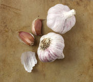 Organic garlic on an old rustic stone chopping board Royalty Free Stock Photography