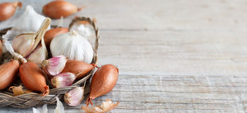Organic garlic and onion on wooden table Stock Photography