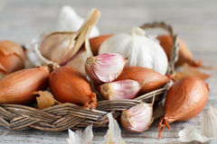 Organic garlic and onion on wooden table Stock Photo