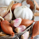 Organic garlic and onion on wooden table Stock Image