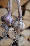 Organic garlic Stock Photos