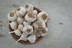 Organic garlic in a pot Stock Images