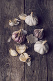 Organic garlic Stock Photography