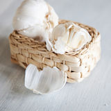 Organic garlic whole and cloves. On the wooden background Royalty Free Stock Photography