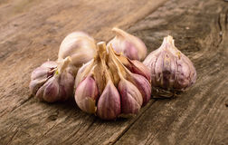 Organic garlic whole Stock Photography