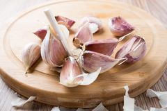 Organic garlic Stock Images