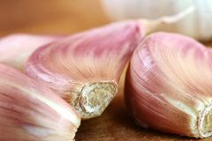 Organic garlic on wooden cutting board Stock Photography