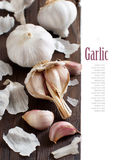 Organic garlic on wooden table Stock Photos