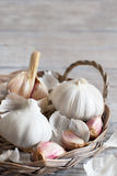 Organic garlic on wooden table Stock Images