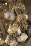 Organic garlics hanging in a market place Royalty Free Stock Photo