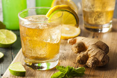 Organic Ginger Ale Soda Royalty Free Stock Photos