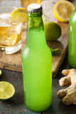 Organic Ginger Ale Soda Stock Images