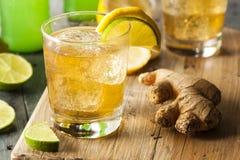Organic Ginger Ale Soda Stock Photos