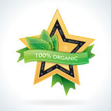 Organic gold star emblem with green leaves Stock Photos