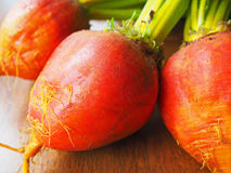 Organic Golden Beets Royalty Free Stock Photography