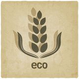 Organic grain old background Royalty Free Stock Photo