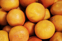 Organic grapefruits at market stall Stock Images