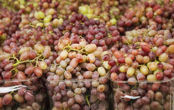 Organic grapes on display at the sf farmer's market Royalty Free Stock Images