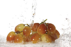 Organic grapes splash in water-isolat Stock Image