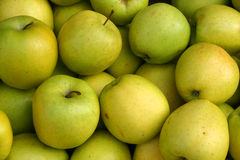 Organic Green Apples. Green Apples in a market stand royalty free stock photography